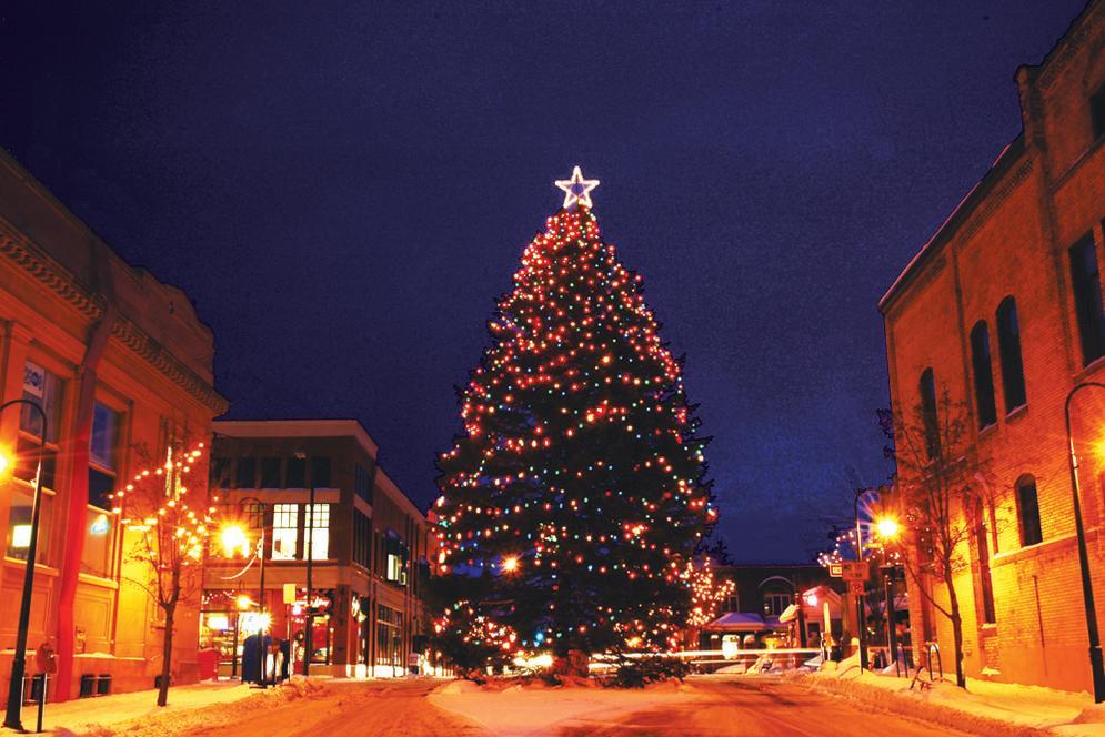 christmastreedowntown