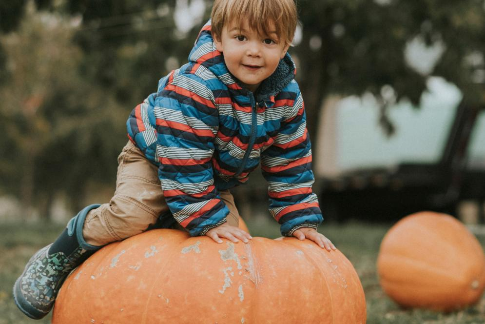 Kids at a Pumpkin Patch - Traverse City