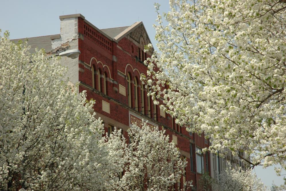 City Opera House in Spring