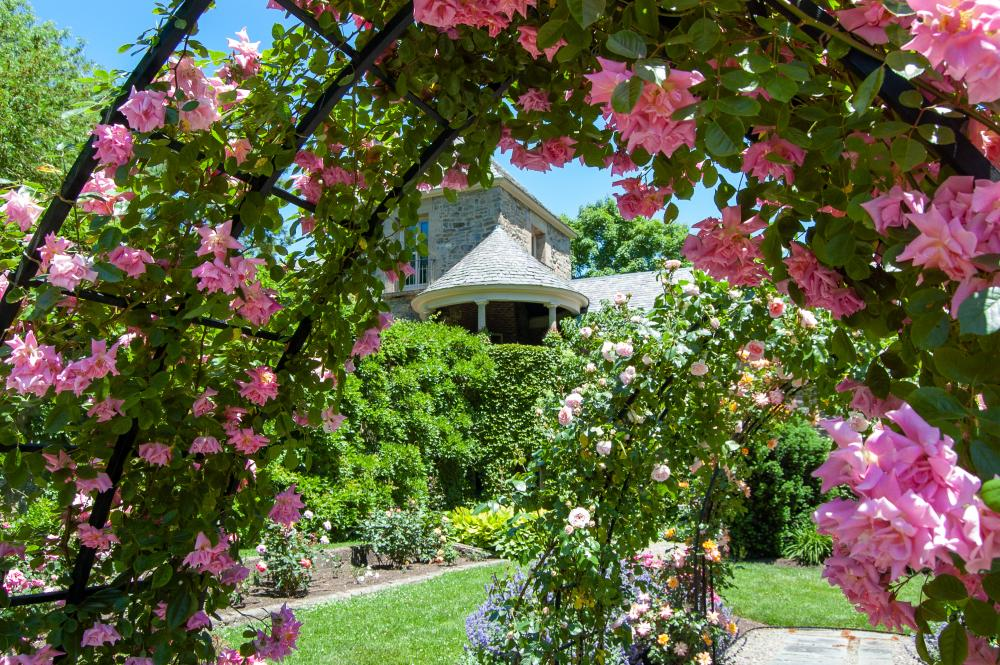 Rose Garden at Andalusia