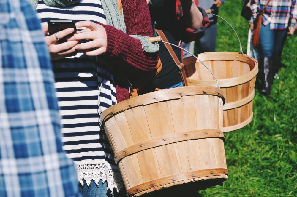 Group-of-people-carrying-baskets-for-berry-picking