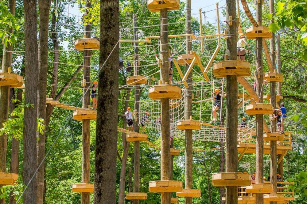 Youth in high ropes course at Harpers Ferry Adventure Center