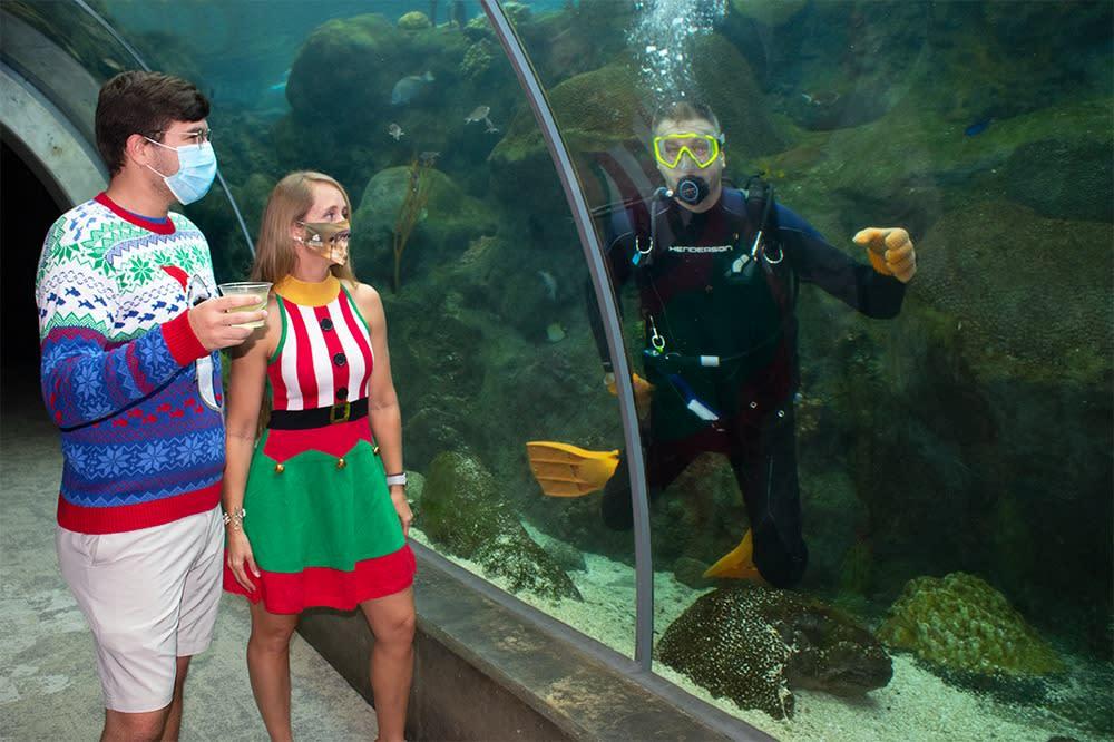 Florida Aquarium Ugly Sweater