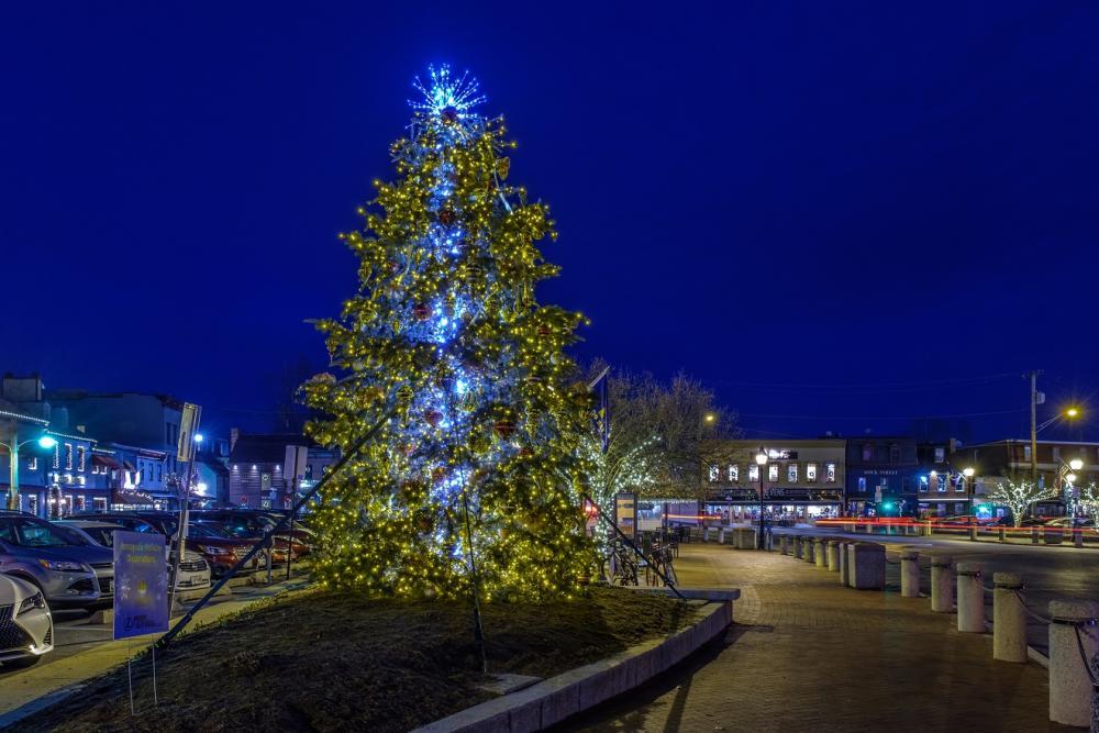 Christmas Tree Night Photo