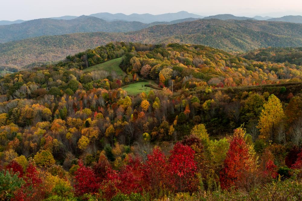 A colorful valley near Max Patch Mountain
