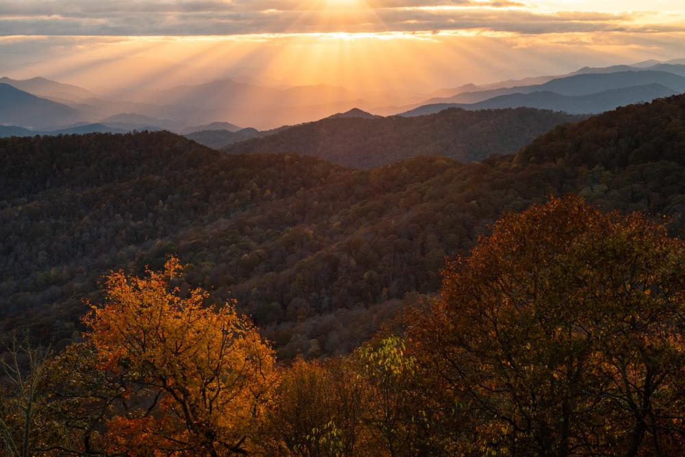 Lights rays shine down on the mountain ridges behind a stand of autumn trees
