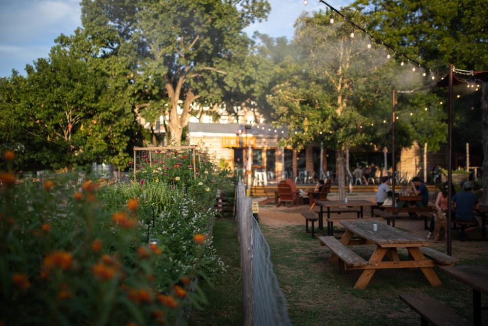 Cosmic Coffee and Beer Garden and Patio in Austin Texas