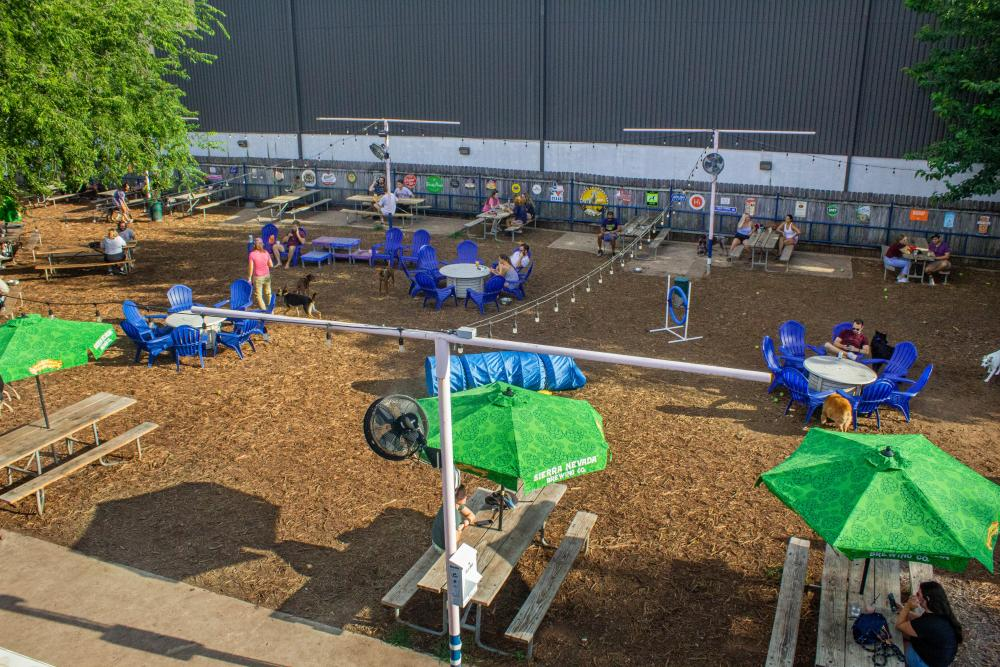 aerial photo of Yard Bar ourdoor dog park with shaded picnic tables and space for dogs to play