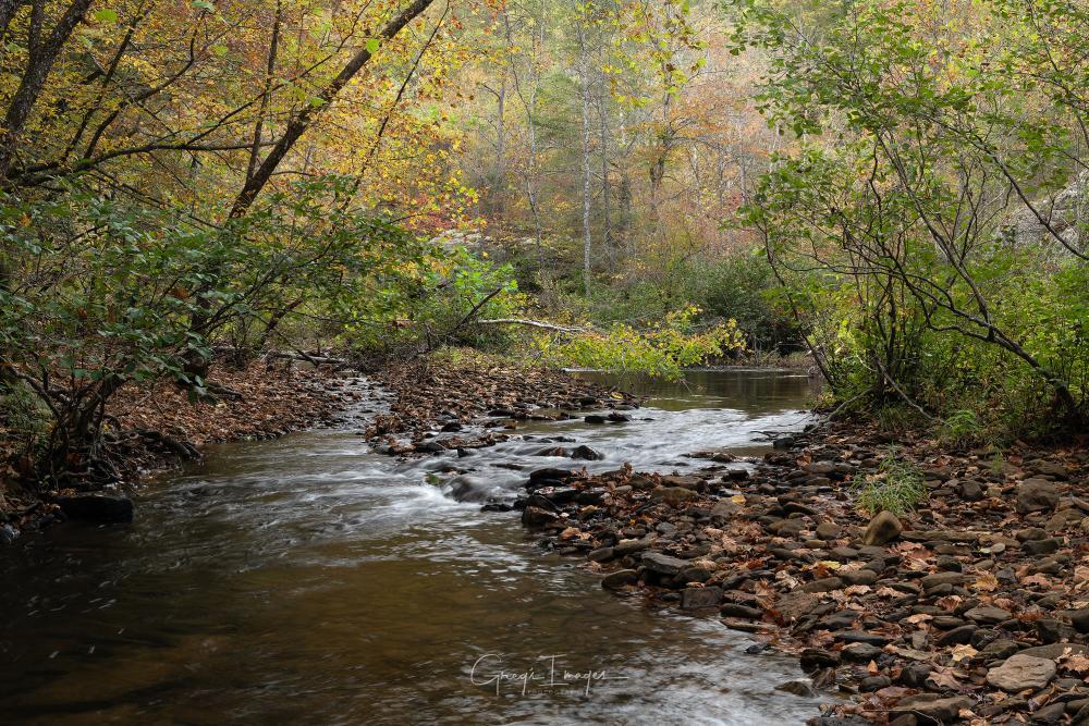 October at Rock Creek