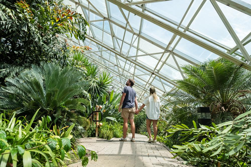Couple exploring the gardens at the Botanical Conservatory