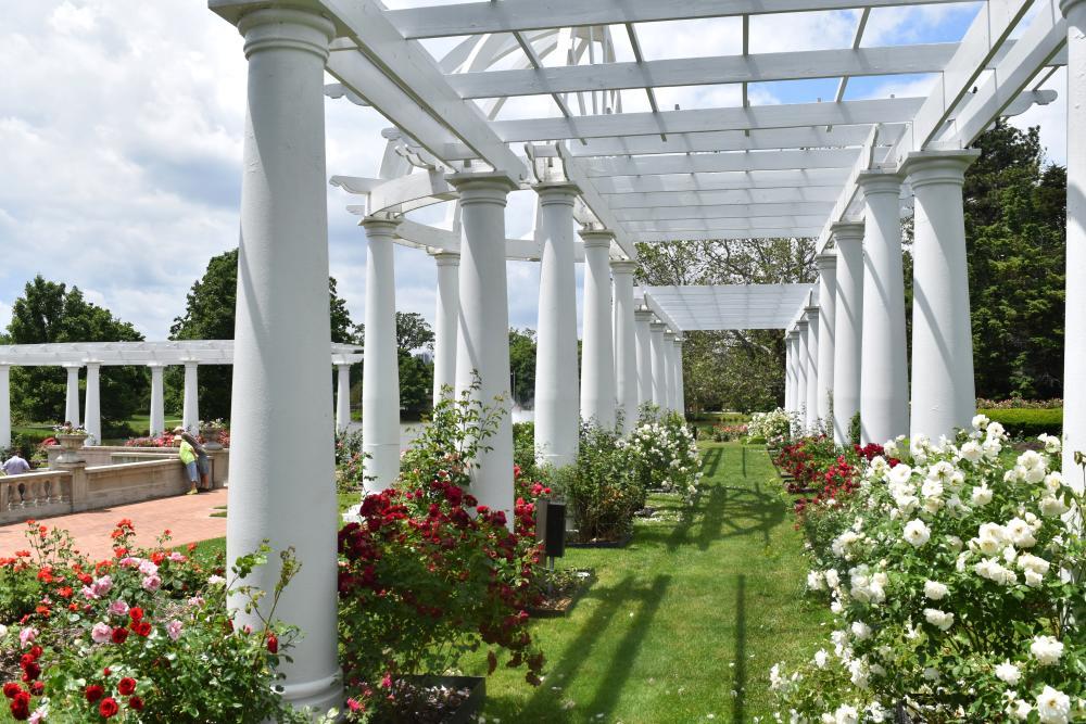 Lakeside Rose Garden - Fort Wayne, IN
