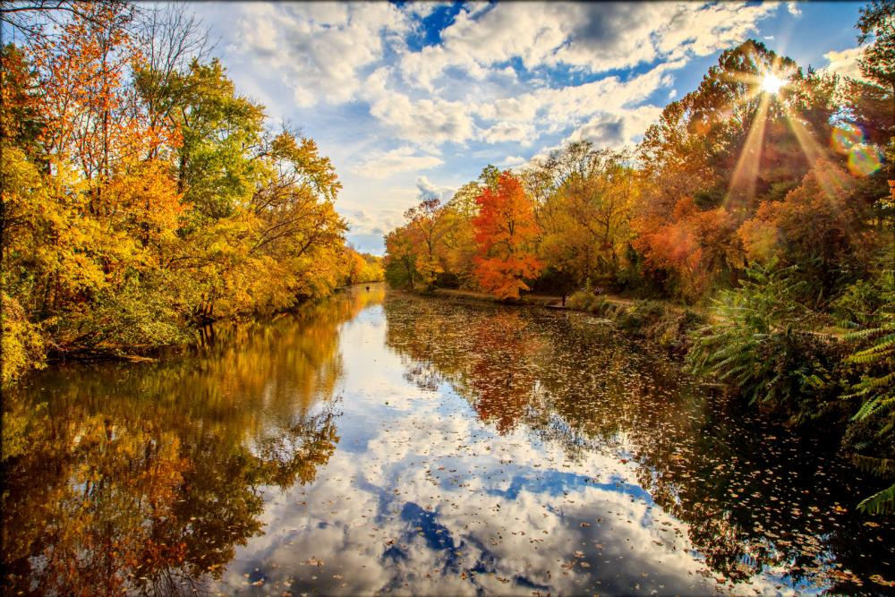 Trees with fall colors hanging over the canal at the Delaware & Raritan Canal State Park