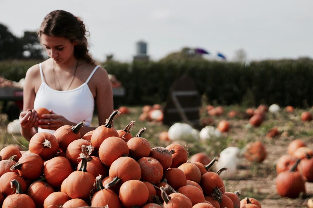 Woman-selecting-pumpkins-at-a-pumpkin-farm,