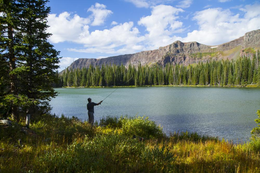 Fishing in the Flat Tops Wilderness