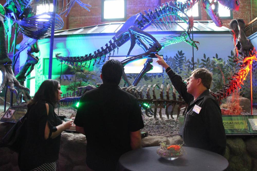 T-rex Exhibit at Museum of World Treasures