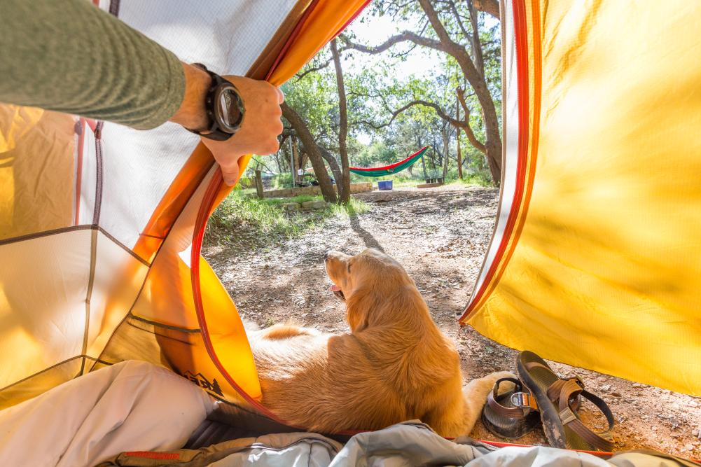 man and dog tent camping at inks lake state park near austin texas