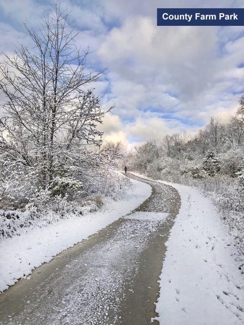 County Farm Park in the winter, Ann Arbor, MI