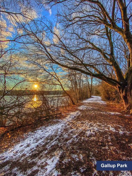 Gallup Park in the Winter, Ann Arbor, MI