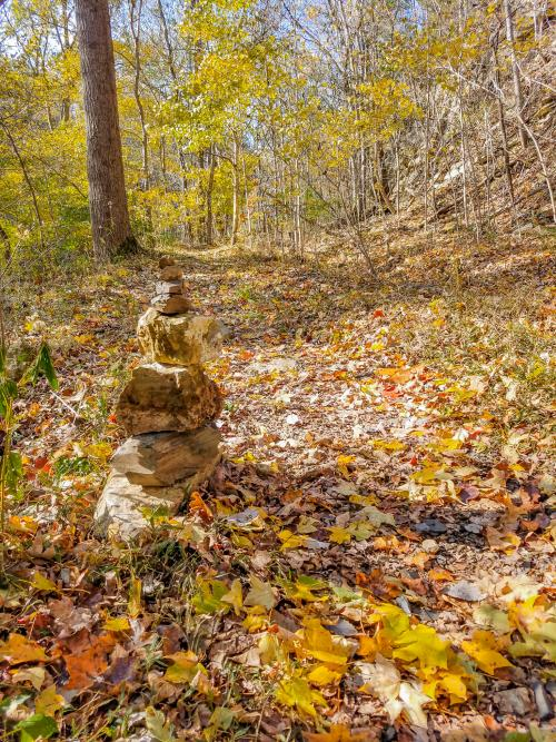 Fall foliage and stacked rocks along Charlestown State Park Trail