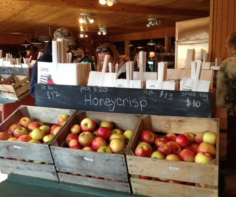 """Three bins of apples beneath a chalkboard sign that says """"Honeycrisp"""" in the foreground with shoppers browsing in the background at Apple Jack Orchards"""