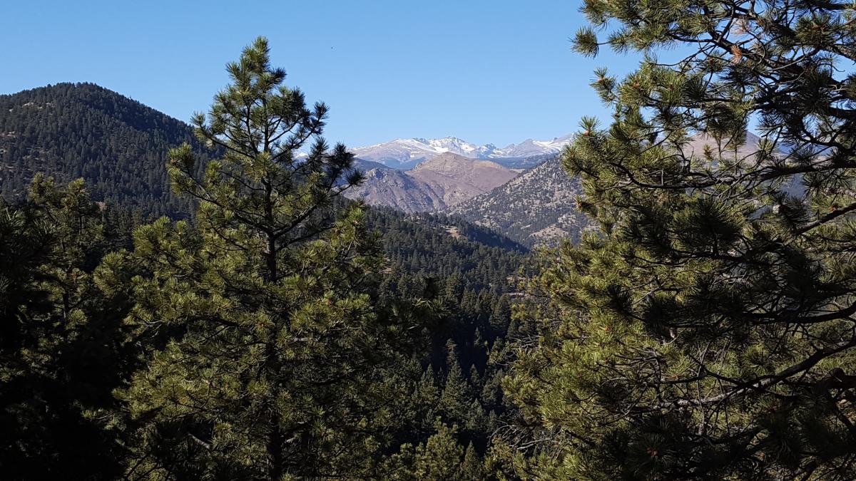 Chapman Trail