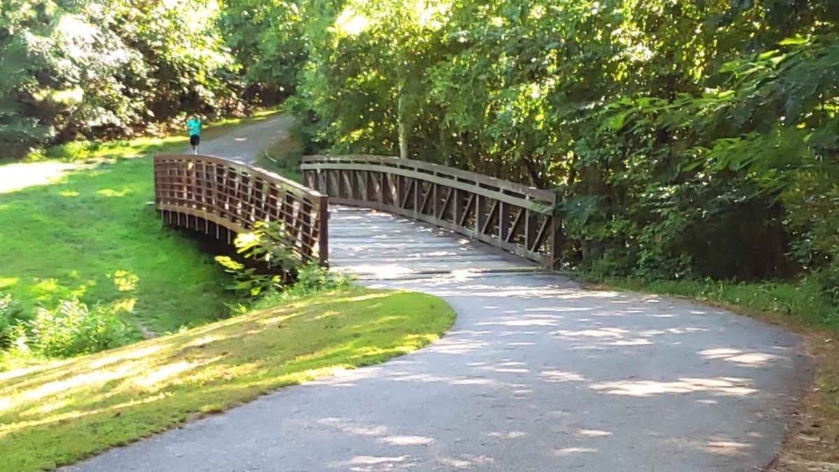 Runner on Morgan Creek Trail