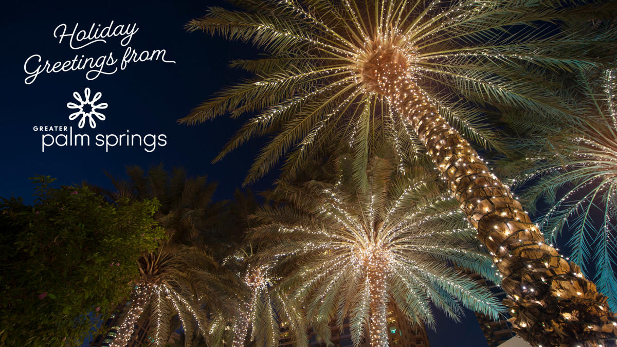 Sparkling Palm Trees