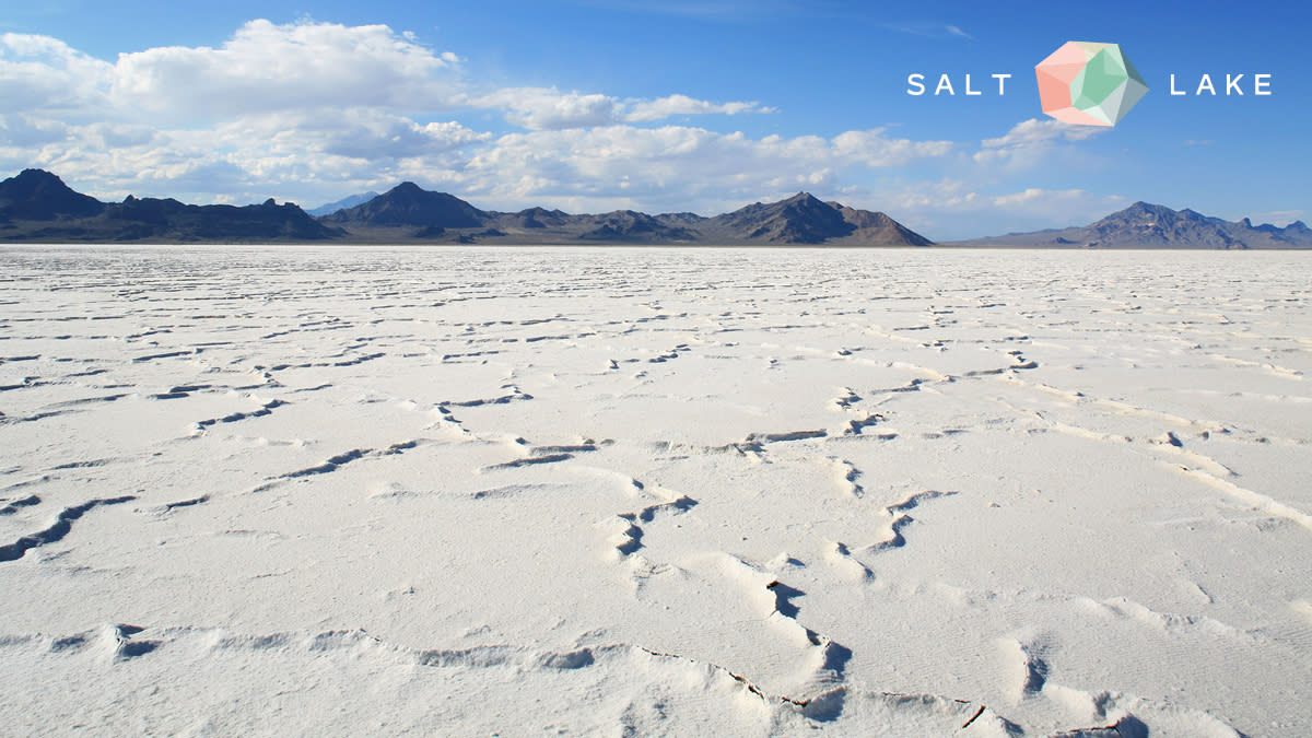Salt Flats Zoom background