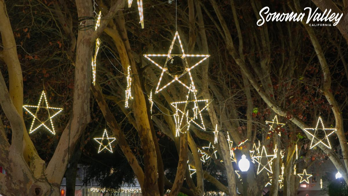 Holiday stars on the Sonoma Plaza for Zoom