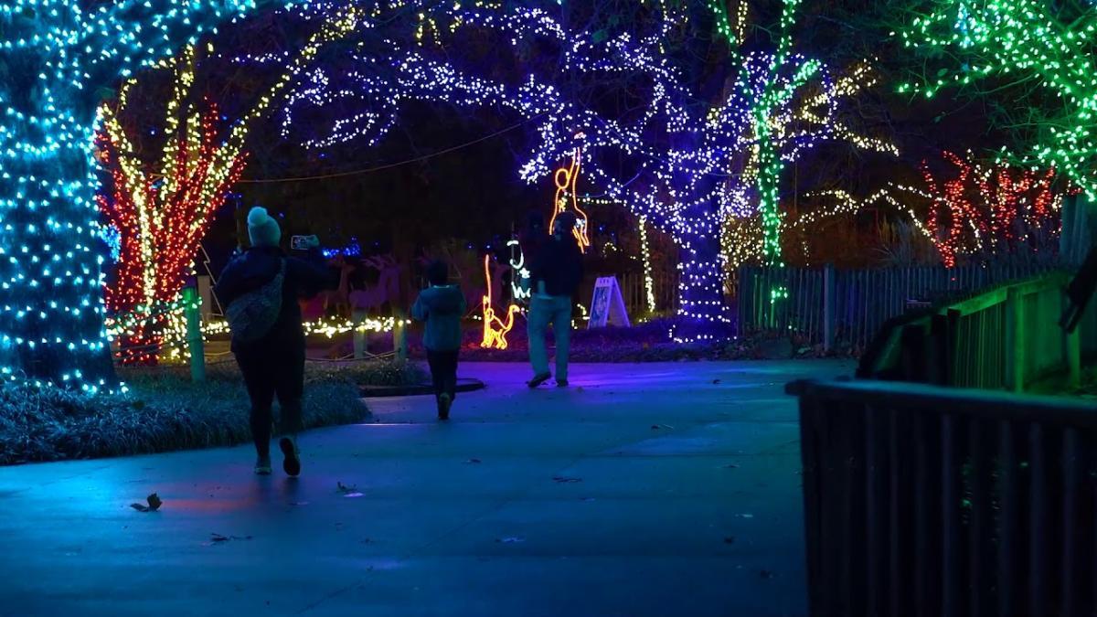 Video Thumbnail - youtube - Topeka Zoo Lights
