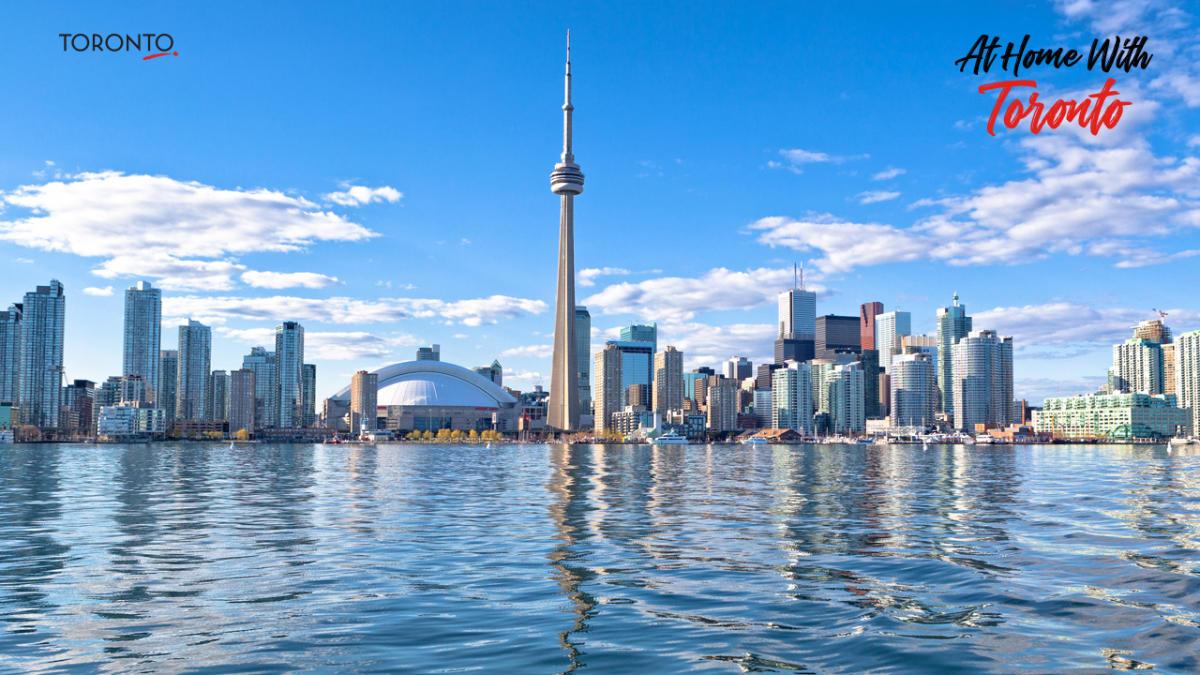 Toronto-Zoom-Backgrounds1