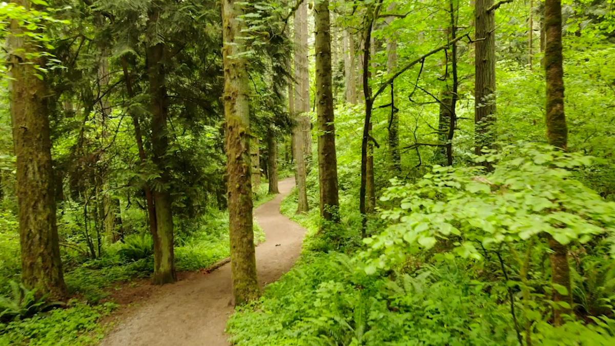 Whipple Creek Park_21