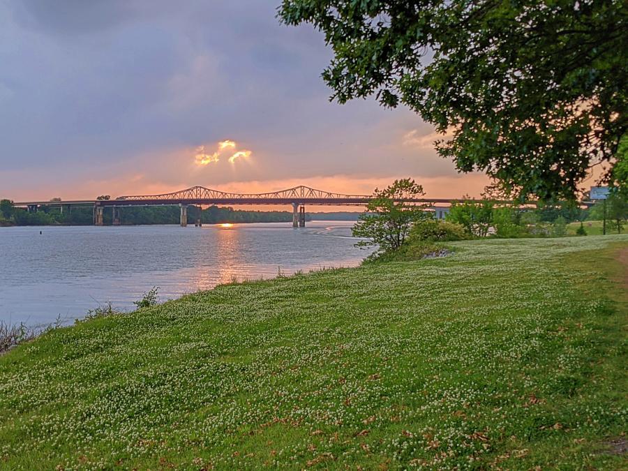 Ditto Landing Bridge by Jenn Coleman of Coleman Concierge