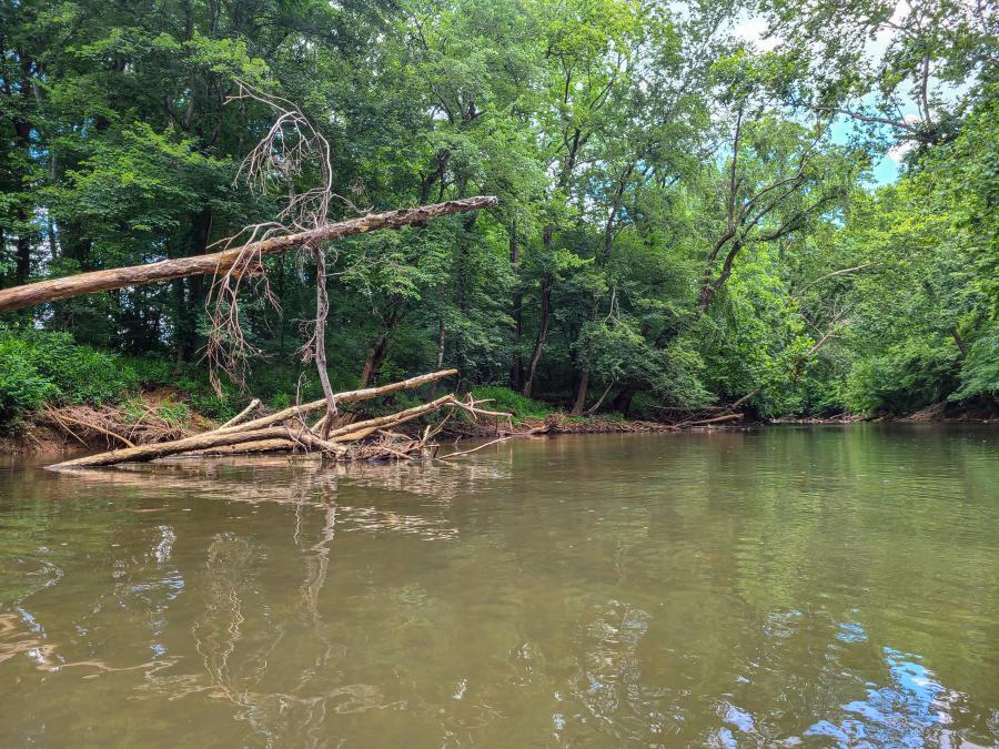 Flint River by Jenn Coleman of Coleman Concierge