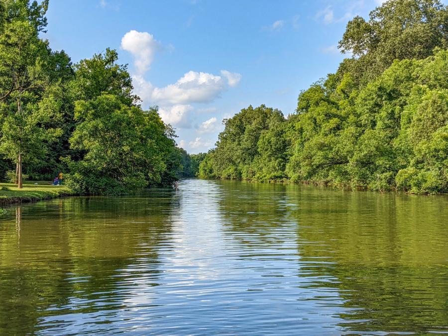 Indian River Creek by Jenn Coleman of Coleman Concierge kayak
