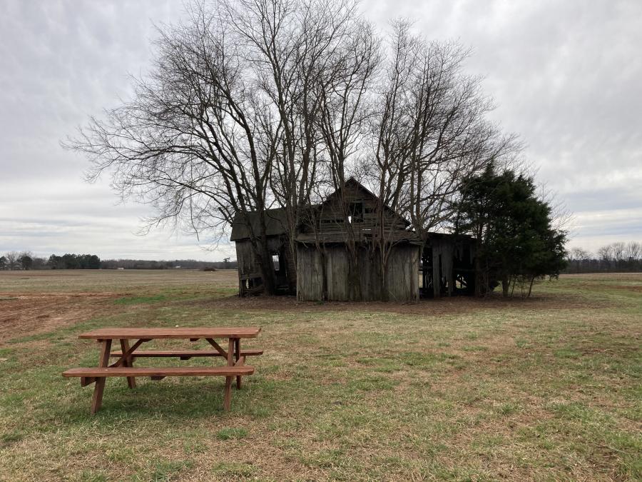 Hubert Family Tulip Farm