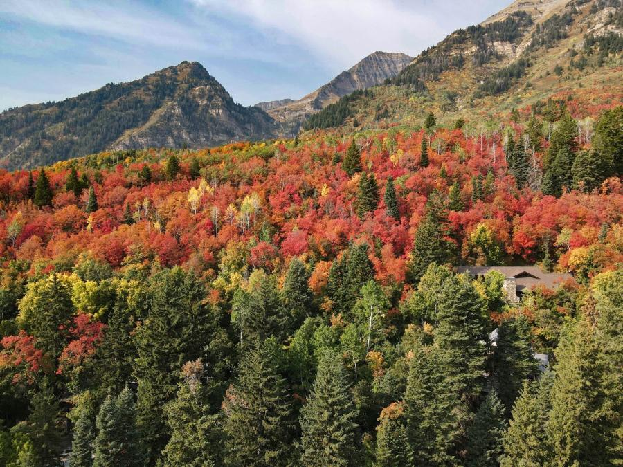 Alpine Loop in Fall Time
