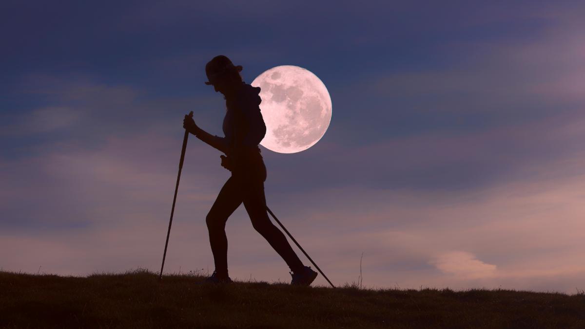 Full Moon Hike Back2Nature
