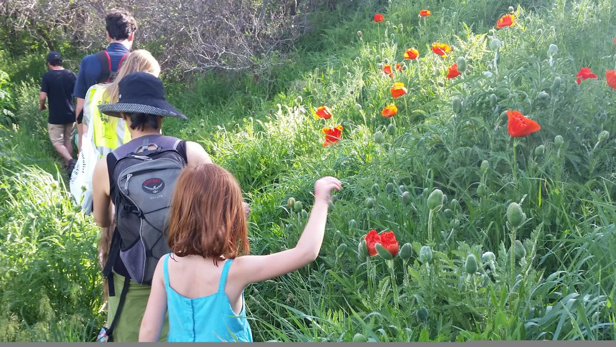 Family hiking among wildflowers on the McClintock Trail Meadow Music