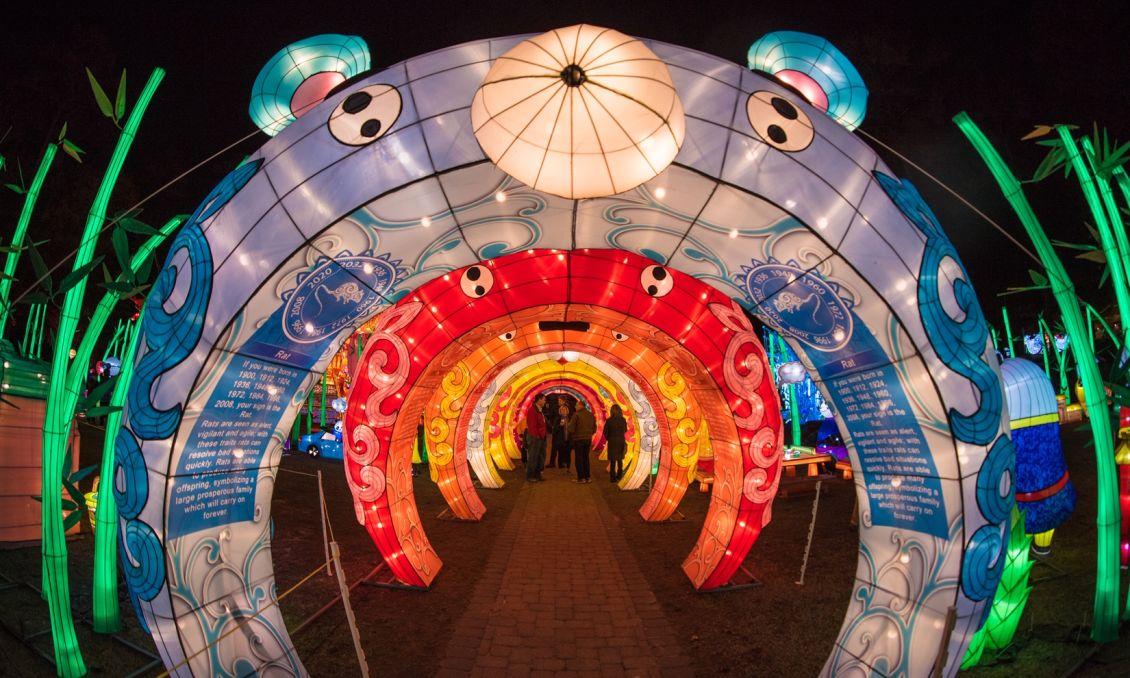 Chinese Lantern Festival 2018