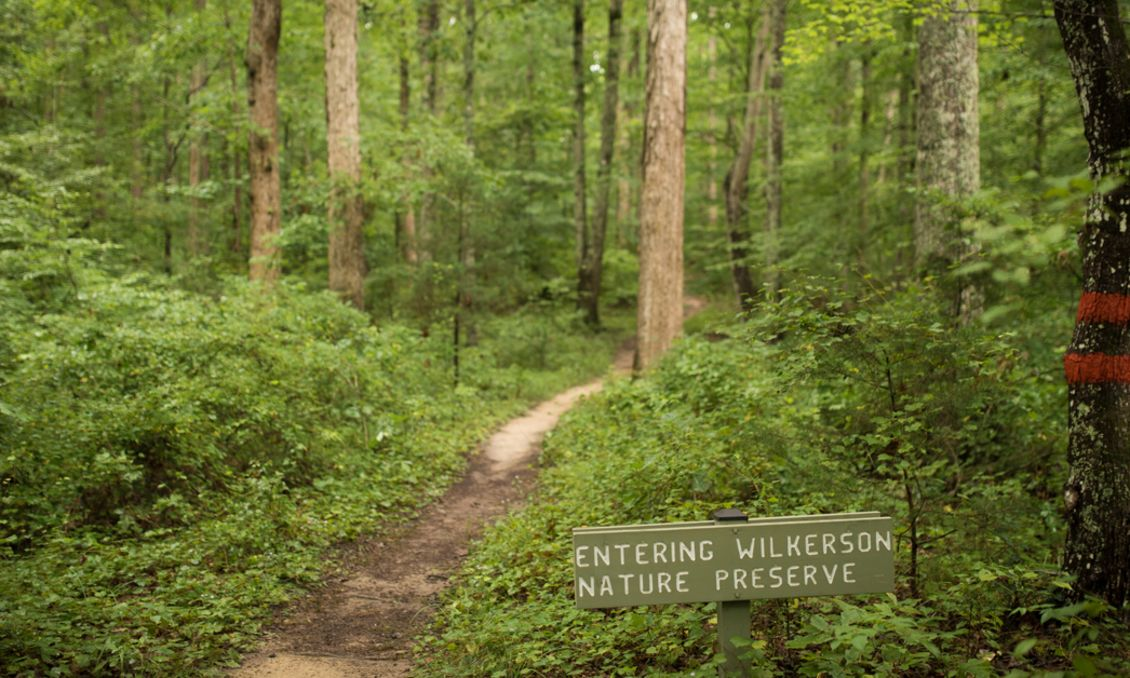 Wilkerson Nature Preserve (open graph)