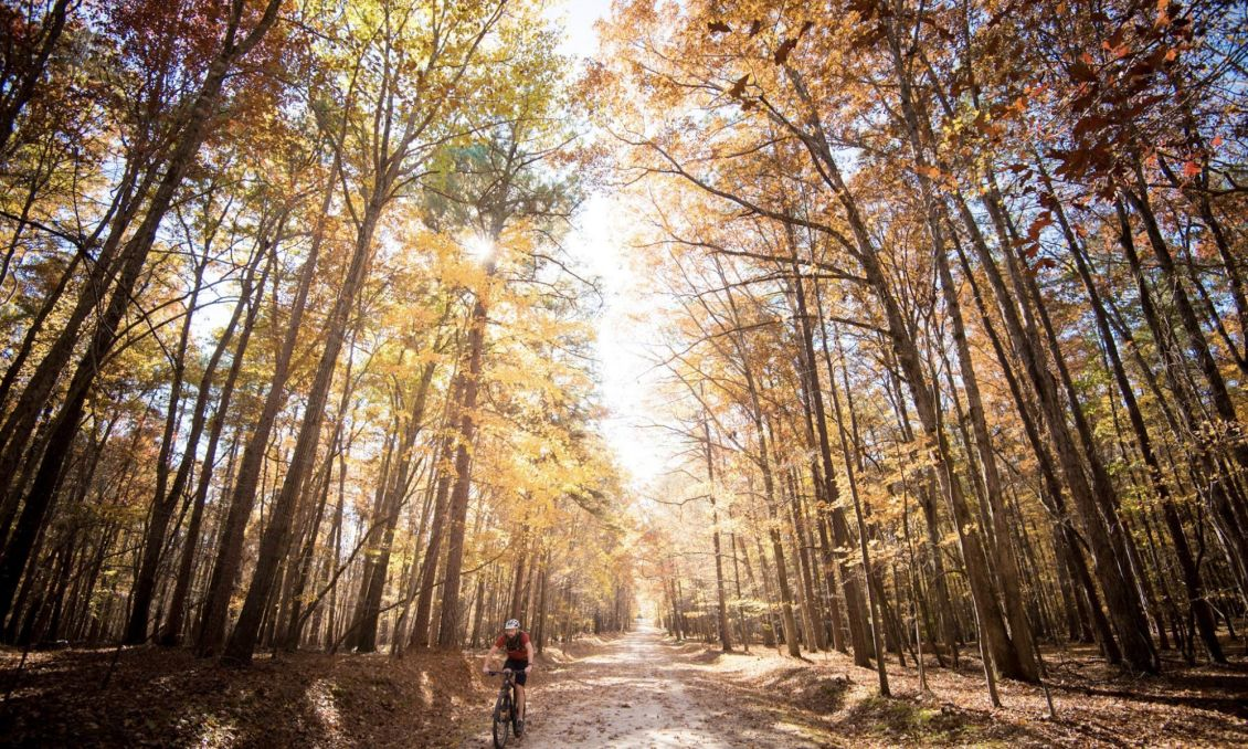 Umstead State Park--Fall