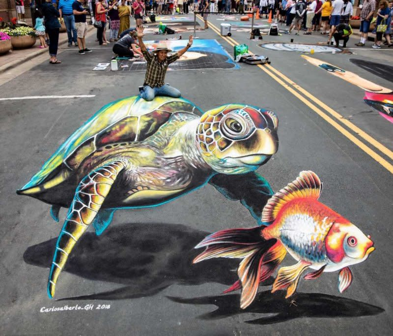 sea_turtle__wysiwyg