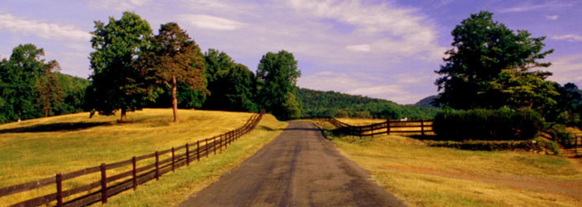 Albemarle Country Road