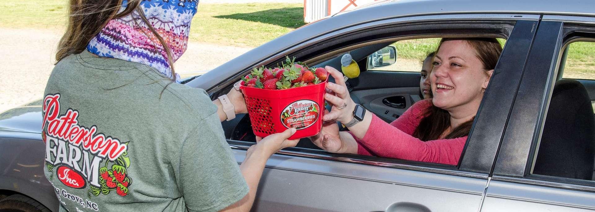 Patterson Farm Strawberry Pick-up