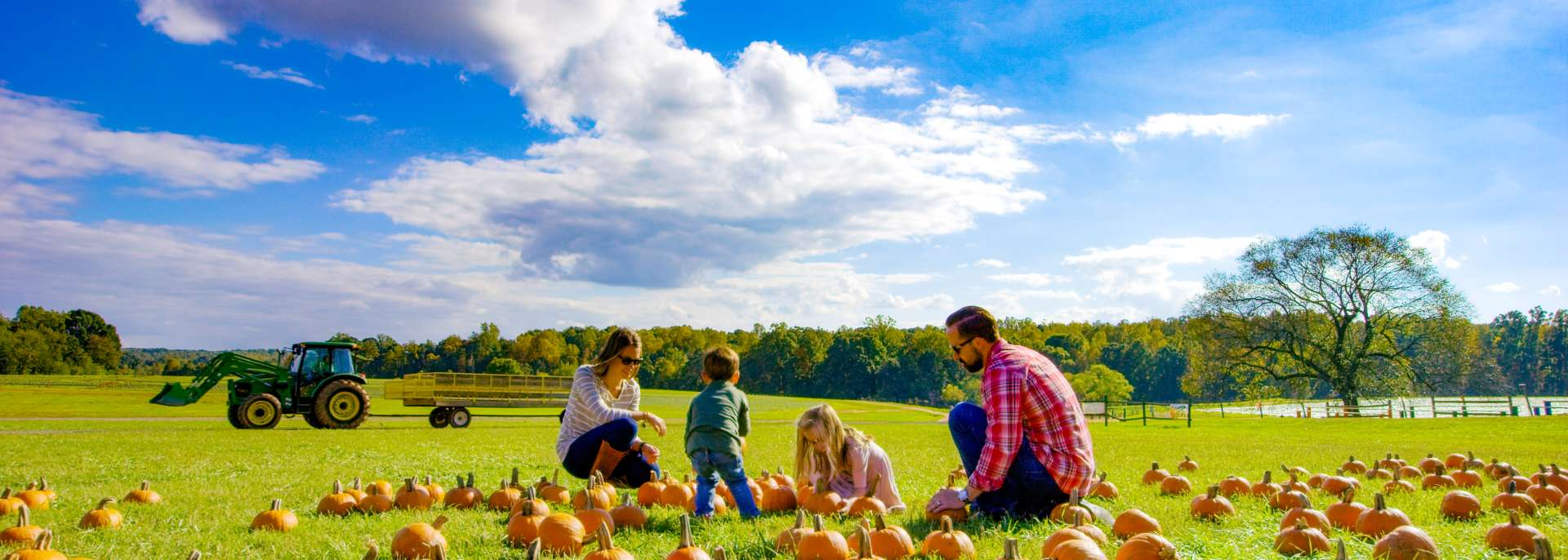 Fall in Rowan County