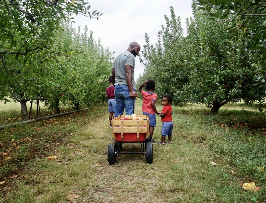 Zenovia Family Apple Picking
