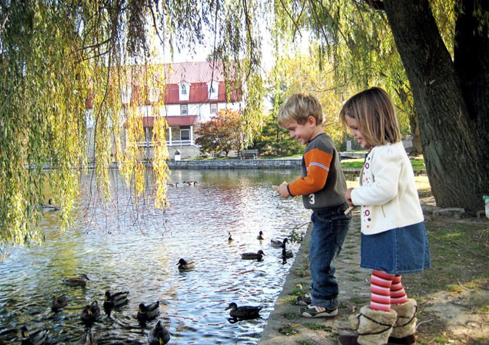 Kids at Children's Lake