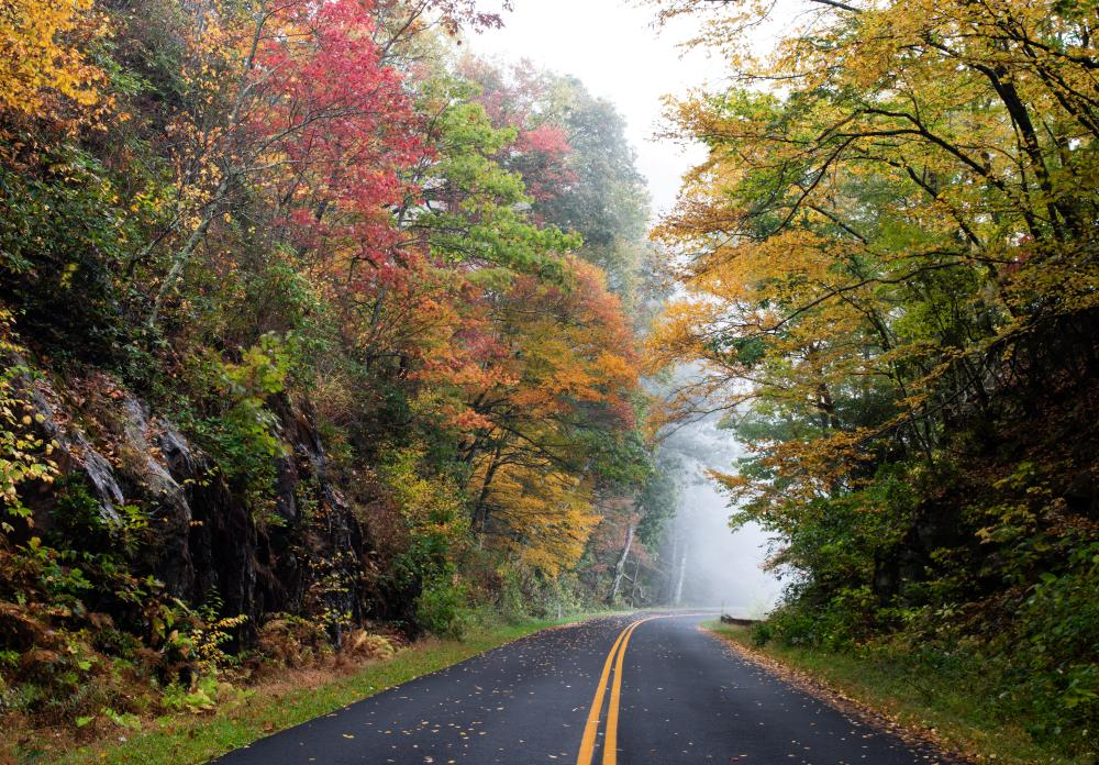 A colorful stretch of the Blue Ridge Parkway near Craggy Gardens just north of Asheville, NC during fall 2020