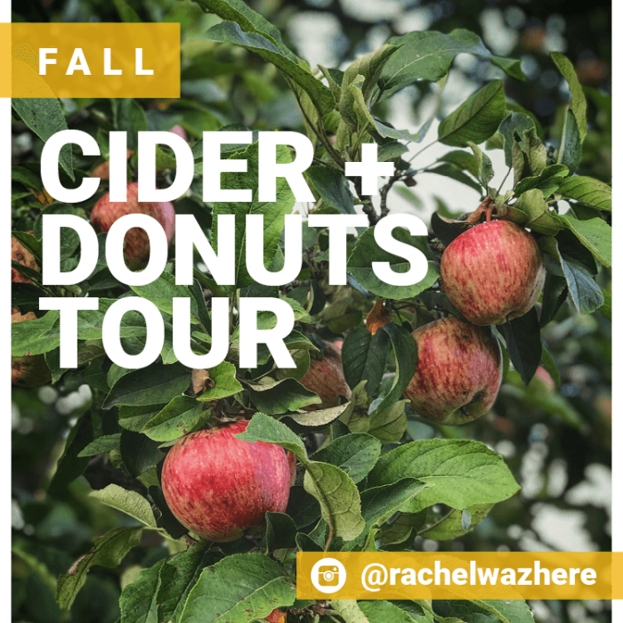 Self-Guided Tours - Fall Cider + Donuts Tour - SAMPLE